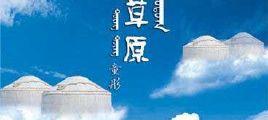 童彤-天上草原DTS-ES  NRG