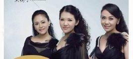 刘芳加入黑鸭子组合后的首张专辑  黑鸭子-音为有你 UPDTS-WAV分轨/百度云