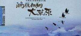 大草原上壮丽的音乐之魂《鸿雁翱翔大草原》2CD