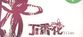 唐磊 - 丁香花 - 2004[WAV][百度云]