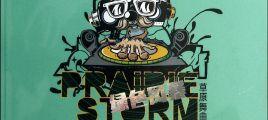 2014最新最热最好听DJ《草原舞曲·绿色风暴》