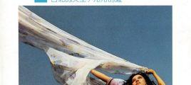 飞碟唱片 王芷蕾精选辑(一)《台北的天空/冷冷的夏》