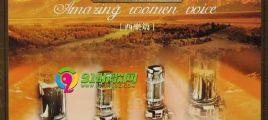 重金属音质娓娓动听天籁极品试音碟-震撼(西乐篇)2CD[WAV整轨]