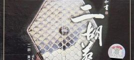 黄江琴-二胡蔡琴APE
