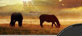 《神奇吹奏乐》 2CD UPDTS-WAV分轨