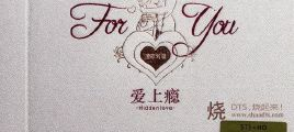 STS+HD《爱上瘾 for you》DTS-WAV分轨