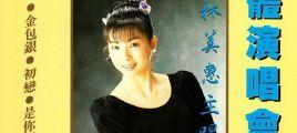 林美惠《立体演唱会13》