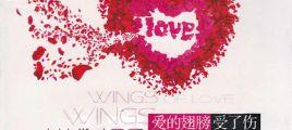 2012都市爱情殇情新作《爱的翅膀受了伤 DSD》