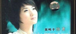 蓝眼泪-杨蔓 DTS5.1声道[双碟]/百度云