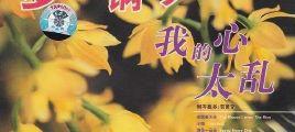 贺贤赟《梦幻钢琴·我的心太乱》