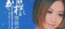 陈瑞-别样邓丽君(DSD)  UPDTS-WAV分轨/百度云