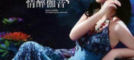 张玮伽·情醉伽音  2CD   UPDTS-WAV分轨/百度云