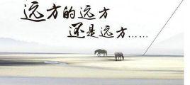 中国风元素 凤凰传奇全新专辑《远方的远方还是远方》UPDTS-WAV分轨/百度云