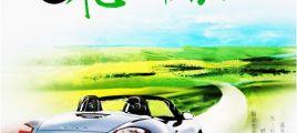 高档汽车专用测试碟2《飞进草原 DSD》