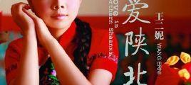 最美的陕北女声 王二妮《爱陕北》