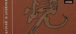 挑战亲身领略的视听效果《烧·烧客时光》2CD