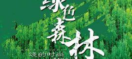男子组合 绿色森林 WAV无损音乐下载/百度云