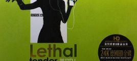 英文DJ《致命的温柔-2》高清解晰 震憾音效