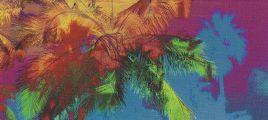 迈阿密大学音乐爵士乐队-迈阿密爵士 立体声WAV整轨+CUE